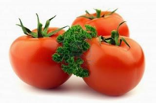 Menanam Tomat Dalam Pot Atau Polibek