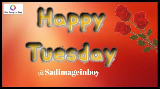 Happy Tuesday images   good morning tuesday meme, tuesday morning inspirational quotes