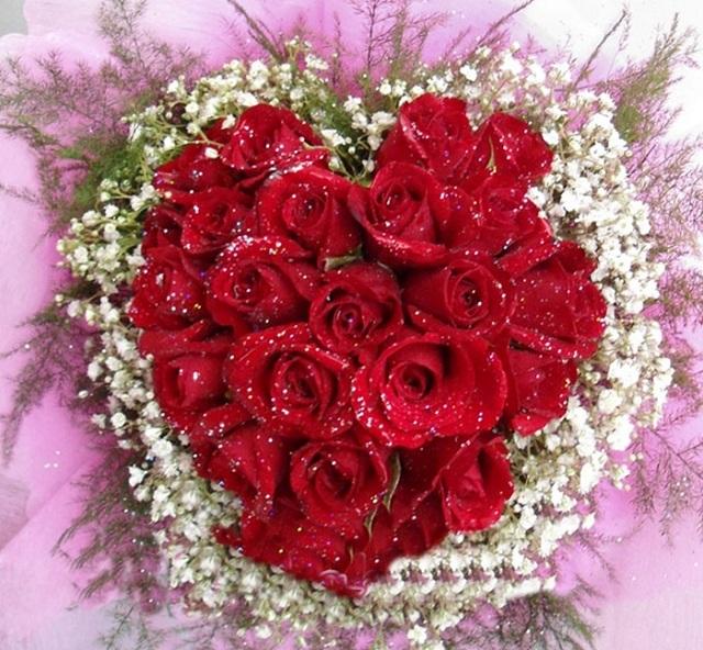 Những bó hoa hồng đẹp dành tặng sinh nhật bạn gái 2