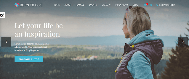 Nonprofit Fundraising & Charity WordPress Themes With Donation System    Born To Give