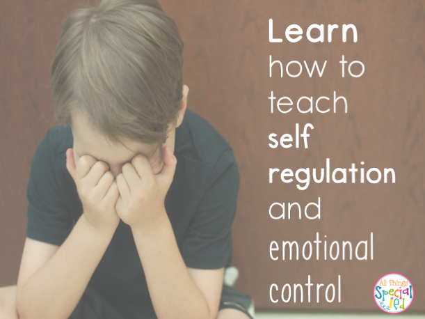 Teacher We Must Teach Emotional >> All Things Special Ed How To Teach Emotional Regulation With All