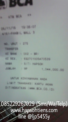 Hub. 085229267029 Obat Asam Urat Ampuh di Teluk Bintuni Distributor Agen Toko Stokis Cabang Tiens