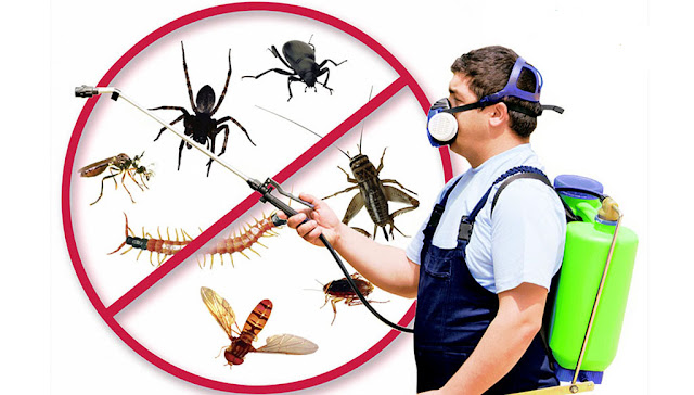 phun muỗi tại huyện Thanh Oai
