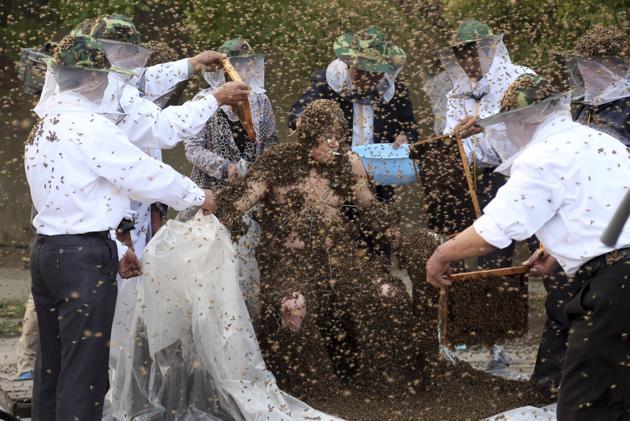 Τυλίχτηκε με 1.000.000 μέλισσες για να μπει στο βιβλίο των ρεκόρ Γκίνες, τον κατατσίμπησαν βέβαια...