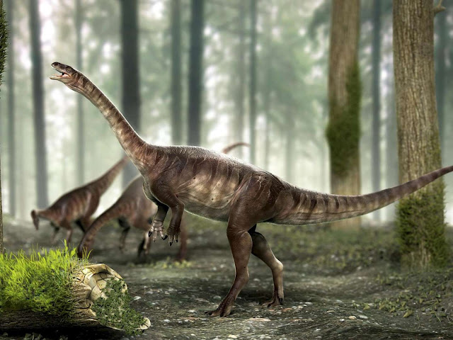 Fossil of oldest long-necked dinosaur found in Brazil