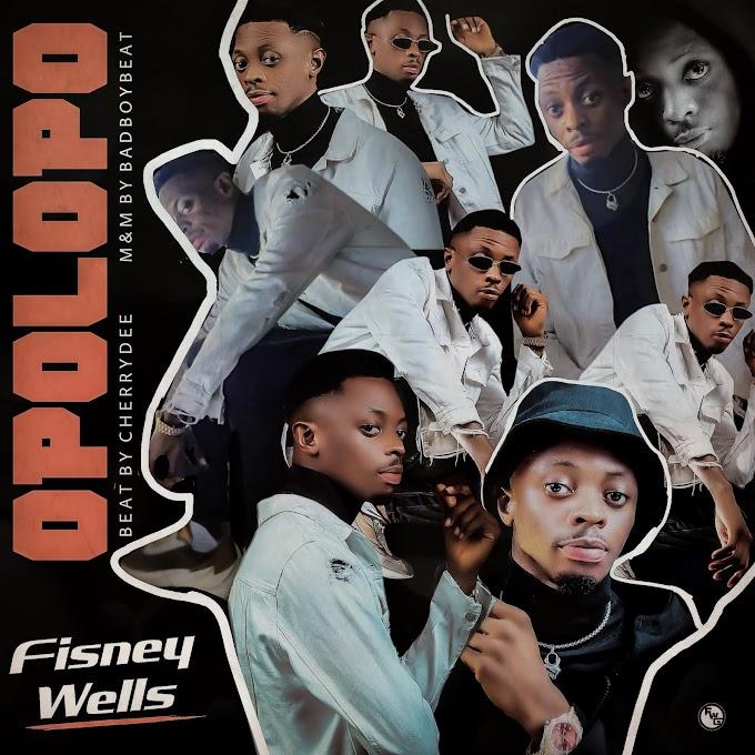 MP3: Fisney wells -opolopo
