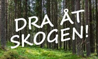 http://www.alvdalen.se/sv/Puffar/Dra-at-skogen1/