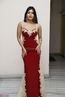 Rachana Smit in Red Deep neck Sleeveless Gown at Idem Deyyam music launch ~ Celebrities Exclusive Galleries 049.JPG