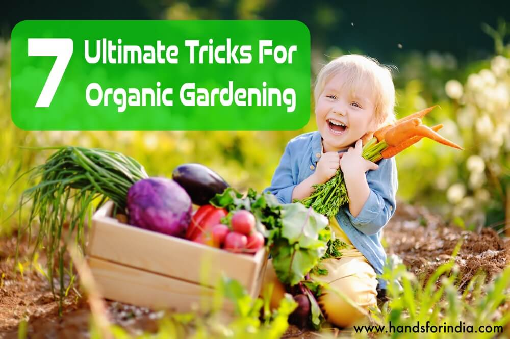 7 Ultimate Tricks For Organic Gardening