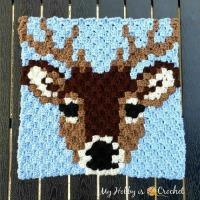 Deer Stag C2C Square