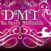 DMT : The Spirit Molecule Documentary Movie (2010)