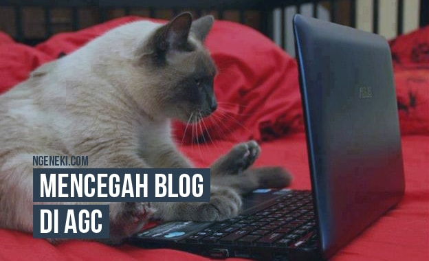 Cara Supaya Blog Tidak Terkena AGC