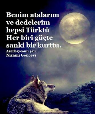 Benim atalarım ve dedelerim hepsi Türktü, Her biri güçte sanki bir kurttu. şair, Nizami Gencevi, bozkurt, atatürk, dolunay,  gece, şiir,