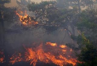 Προ των πυλών η αντιπυρική περίοδος-Πότε απαγορεύεται ν΄ανάβετε φωτιά