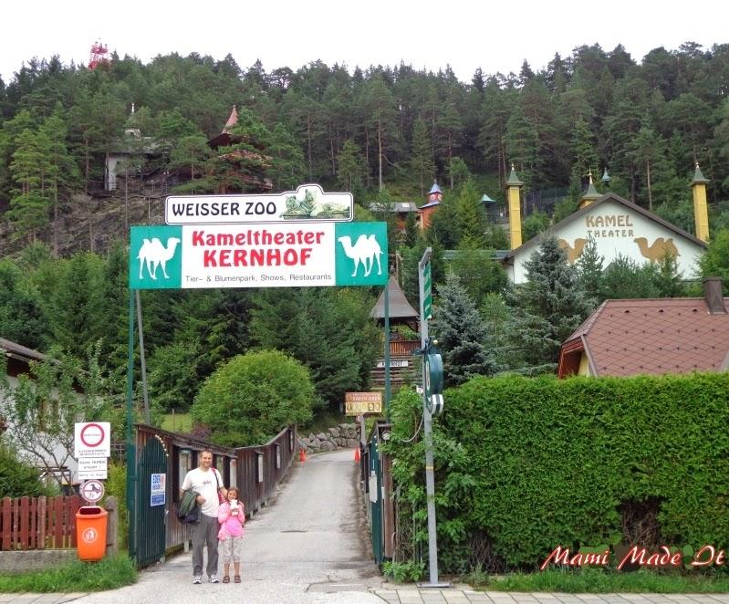 Kameltheater - Weisser Zoo
