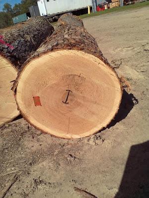 天然木皮板、天然木地板