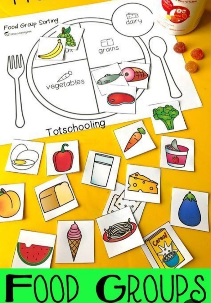 Food Groups and Classification of Food Groups