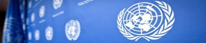 Low Cost Drones, Covid, Video Games: What India Said At UN On Jammu Air Base Attack