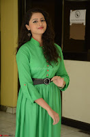 Geethanjali in Green Dress at Mixture Potlam Movie Pressmeet March 2017 085.JPG