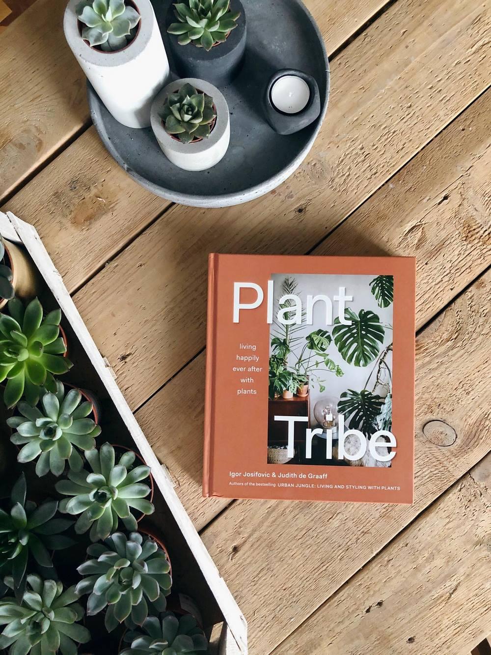 libro sobre cómo decorar con plantas de interior biofilia