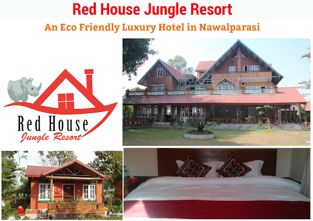 Red House Jungle Resort Banner Design