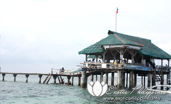 A Day Island Hopping to Nalusuan Island Resort and Marine Sanctuary