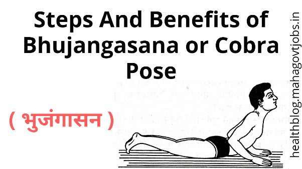 cobra pose benefits, cobra pose variations, cobra pose vs upward dog, cobra pose, benefits of cobra pose for male, yoga poses, bhujangasana steps, bhujangasana benefits, bhujangasana contraindications, bhujangasana in english, bhujangasana benefits & precautions,bhujangasana exercise, bhujangasana benefits and contraindications, how many times to do bhujangasana, how to do Bhujangasana, how to do cobra pose, bhujangasana yoga pose