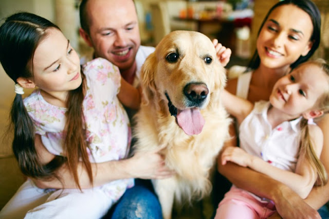 Family Dogs Provide More Than Companionship During Childhood Development