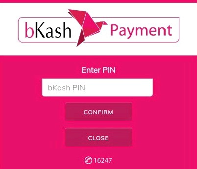 Bkash PIN