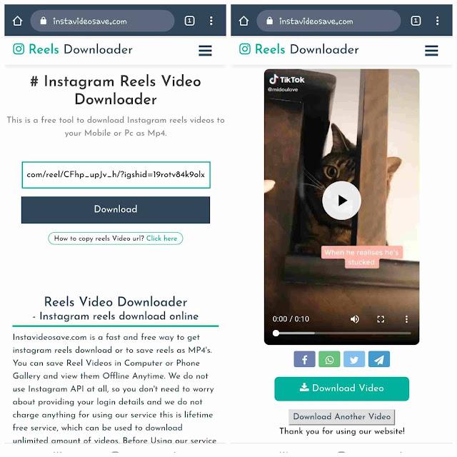 Download Instagram reels videos online