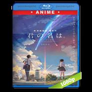 Your Name (Kimi No Na Wa) BRRip 1080p Audio Japones Subt 5.1 (2016)