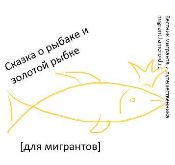 Сказка о рыбаке и рыбке (миграционная)