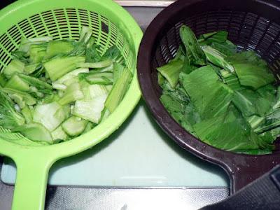 チンゲン菜を切る