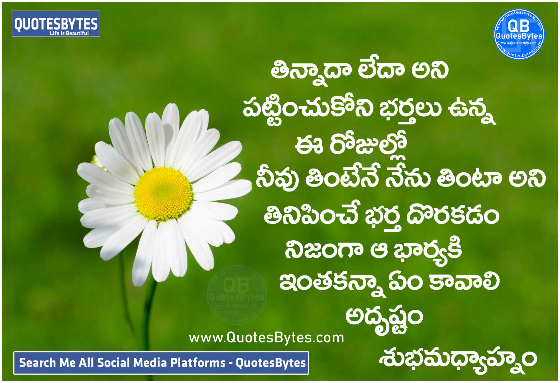 Good Afternoon Quotes in Telugu