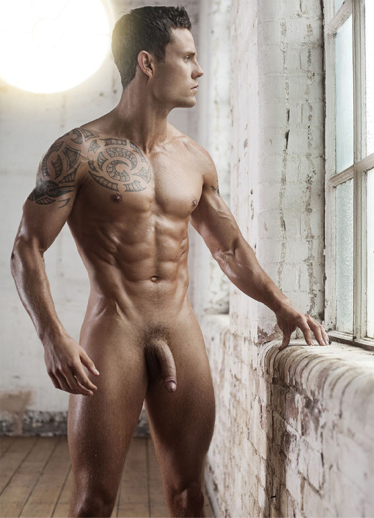 Nude Male Model Porn