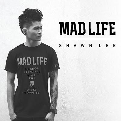 Shawn Lee - Madlife
