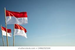 Contoh Essay Peranan Bahasa Indonesia