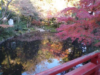 Tsurugaoka Hachimangu Kamakura