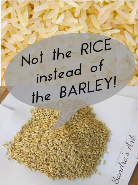 Not the Rice instead of the Barley, Encouragement to listen before we speak