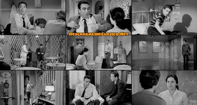 La orquídea negra (1958) The Black Orchid - Descargar y Online gratis