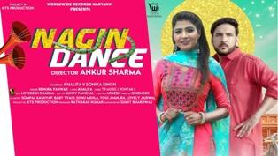 Nagin Dance Lyrics - Renuka Panwar