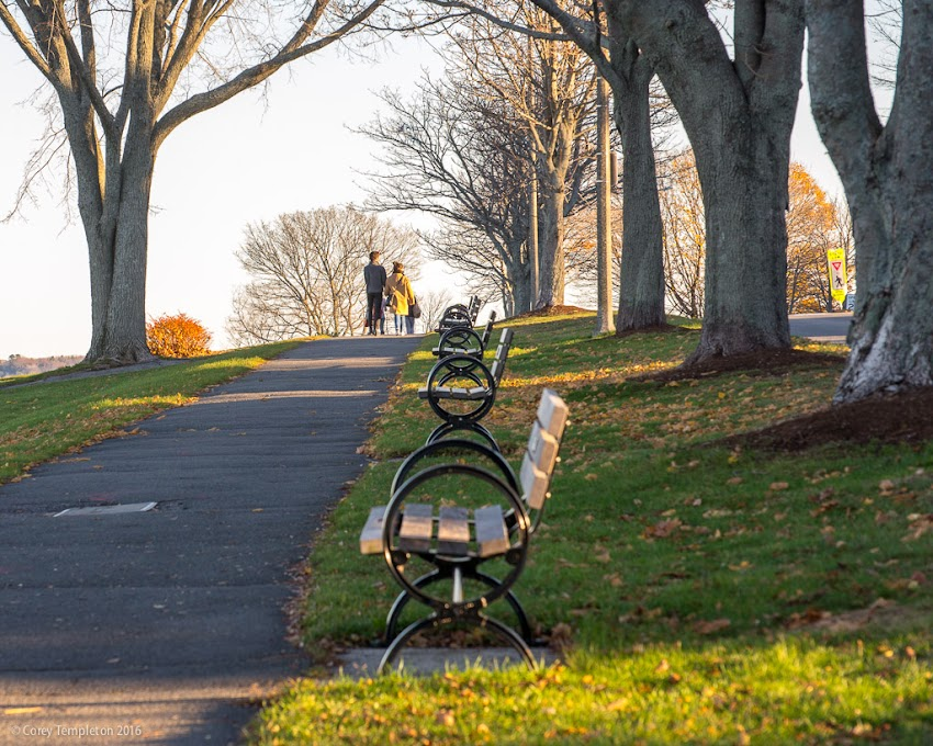Portland, Maine USA November 2016 photo by Corey Templeton of benches along Eastern Promenade on Munjioy Hill.