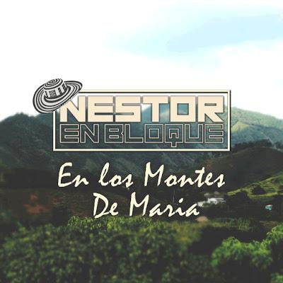 NESTOR EN BLOQUE - EN LOS MONTES DE MARIA (CUMBIA 2020)