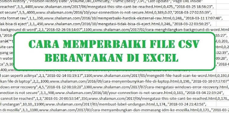 File CSV Berantakan di Excel? Ini Cara Memperbaikinya