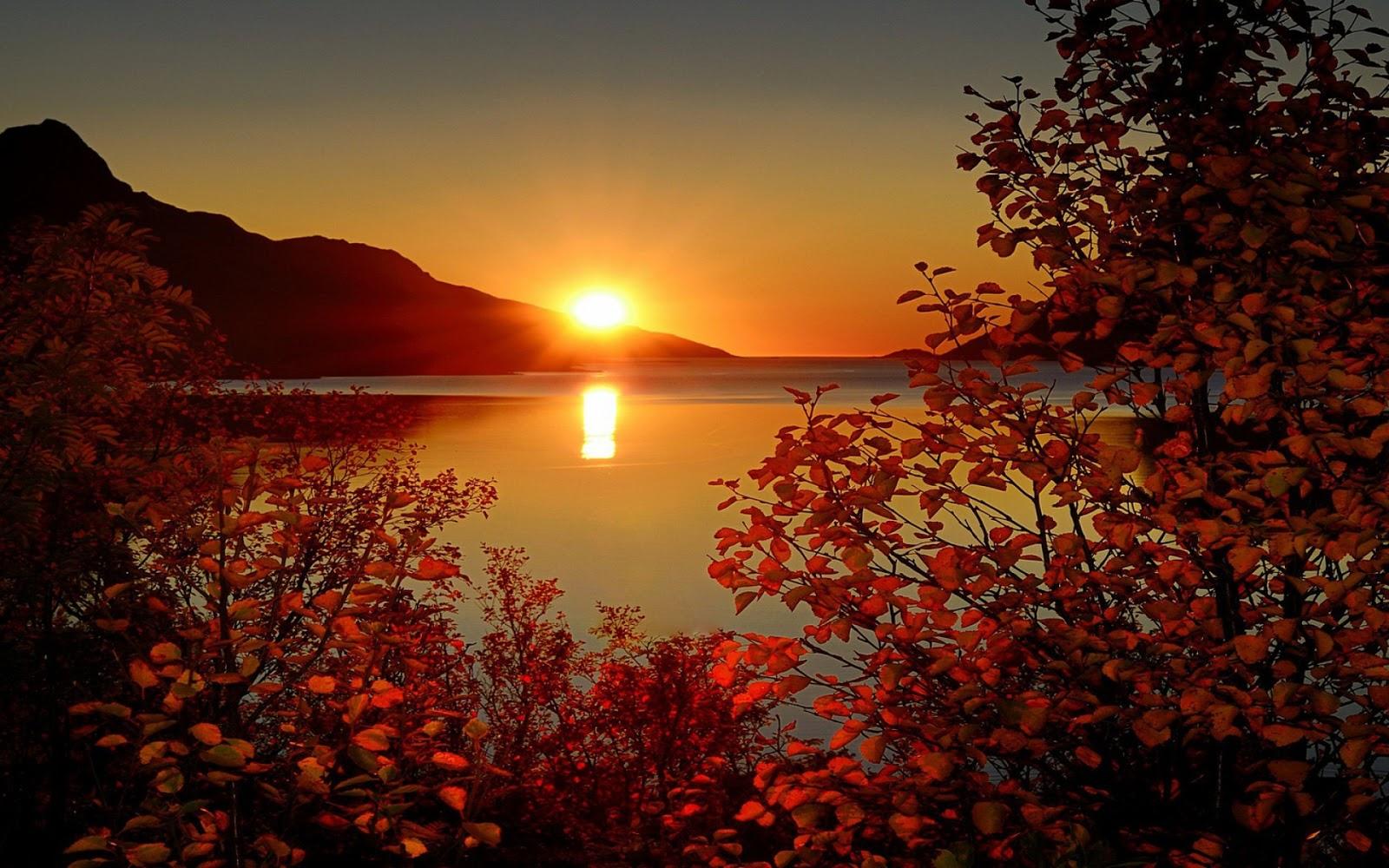 gambar matahari