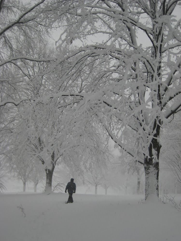 snow, snow photography, photography, how to, winter photography