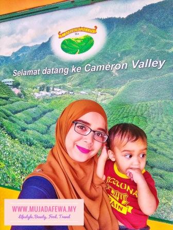 Hari Tu, Kami Jalan-jalan di Cameron Highlands, Pahang.