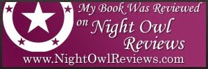 Night Owl Review of Christmas Romance