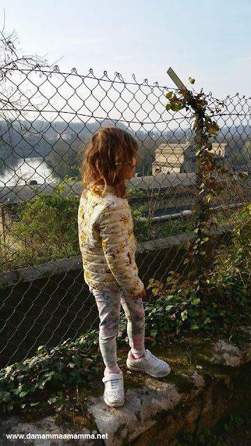 Vista dal Castello Visconteo di Trezzo sull'Adda