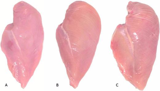Stop eating chicken breasts with 'white striping.' Here's why